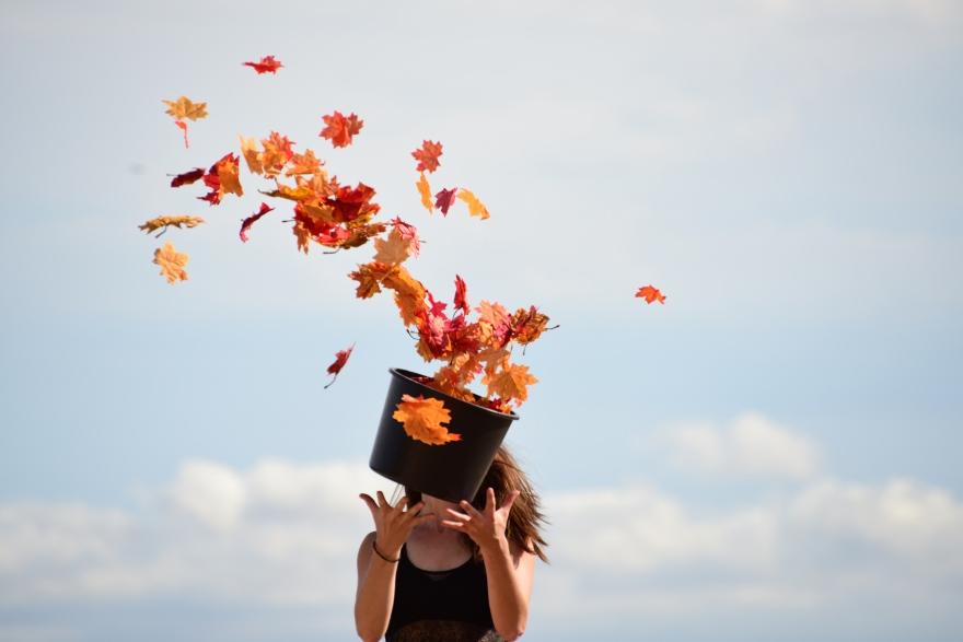 feuilles d'automne sortant d'un chapeau